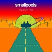 Passenger Side (Grizfolk Remix) by Smallpools