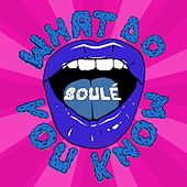 What Do You Know by Soule