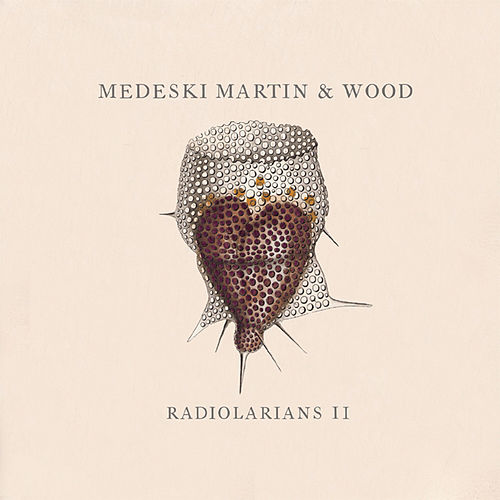 Play & Download Radiolarians II by Medeski, Martin and Wood | Napster