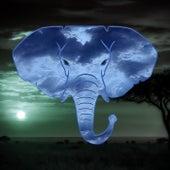 Elephant by Nemesis