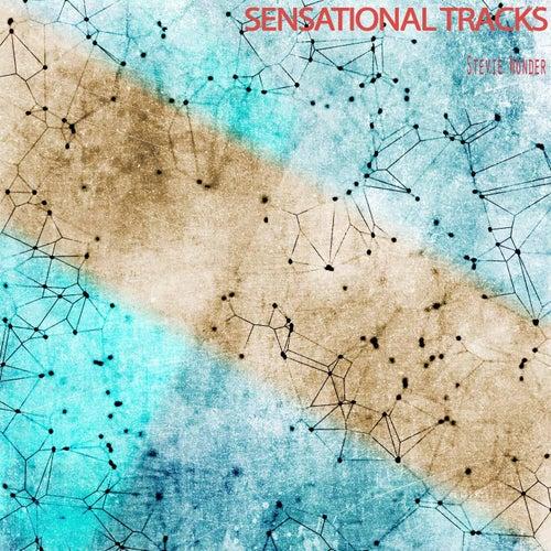 Sensational Tracks by Stevie Wonder