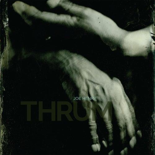 Thrum by Joe Henry