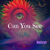 Can You See by The Makers