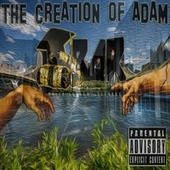 The Creation of Adam by Tamashi Bliss