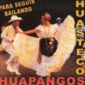 Huapangos Huastecos Para Seguir Bailando by Various Artists