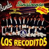 La Unica Estrela by Banda Los Recoditos