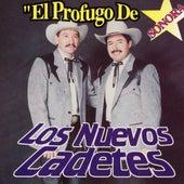 El Profugo De Sonora by Los Nuevos Cadetes