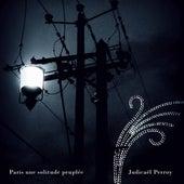 Paris est une solitude peuplée by Judicaël Perroy