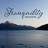 Tranquility Sounds – Perfect Relaxation, Healing Music to Rest, Anti Stress Music, Meditate by New Age