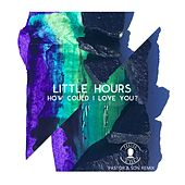 How Could I Love You? (Pastor & Son Remix) by Little Hours