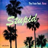 Stupid by F.U.S.E.