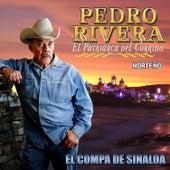 El Compa de Sinaloa by Pedro Rivera
