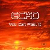 You Can Feel It by Ecko