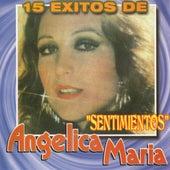 15 Exitos von Angelica Maria