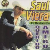 Querido Amigo by Saul Viera