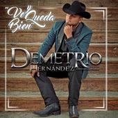 Ve y Queda Bien by Demetrio Hernandez
