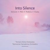 Into Silence: Pärt | Vasks | Górecki | Pelēcis by Various Artists