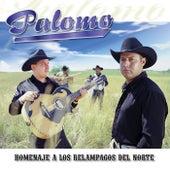 Play & Download Homenaje A Los Relampagos Del Norte by Palomo | Napster