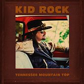Tennessee Mountain Top von Kid Rock