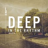 Deep in the Rhythm, Vol. 8 by Various Artists