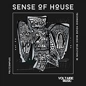 Sense of House, Vol. 38 (Technoid House Music Selection 38) by Various Artists