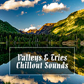 Valleys and Tries Chillout Sounds by Various Artists