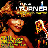 Tina Turner Greatest Hits by Tina Turner