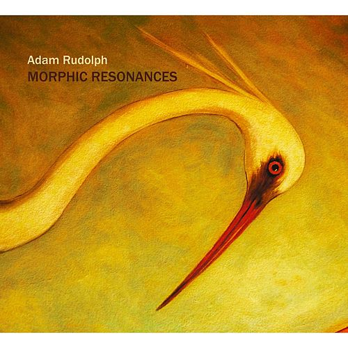 Morphic Resonances by Adam Rudolph