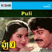 Puli (Original Motion Picture Soundtrack) by Various Artists