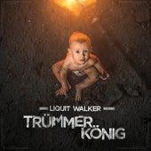 Trümmerkönig von Liquit Walker