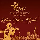 New Year's Gala by Johan Strauss