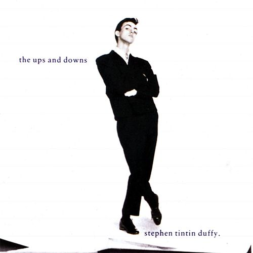 The Ups And Downs by Stephen Duffy