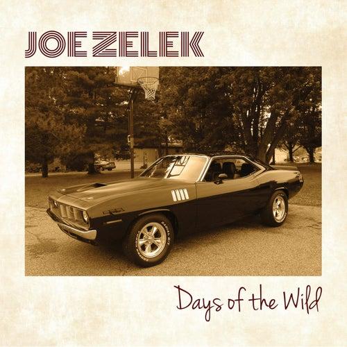 Days of the Wild by Joe Zelek