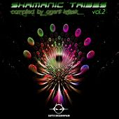 Shamanic Tribes, Vol. 2, Compiled by Agent Kritsek by Various Artists