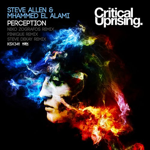 Perception by Steve Allen