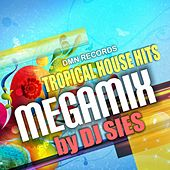 Tropical House Hits by Various Artists