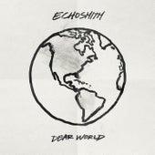 Dear World by Echosmith