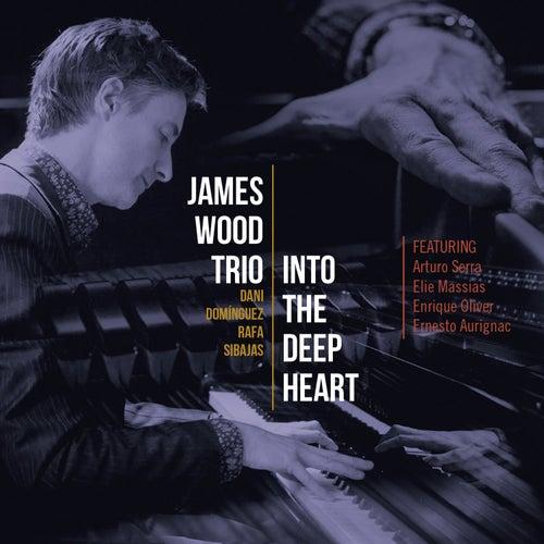 James Wood: