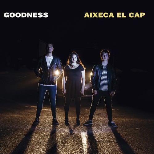 Aixeca el cap by Goodness