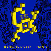 It's What We Live For: Volume 1 by Various Artists