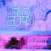 Slo Burn by Lareau