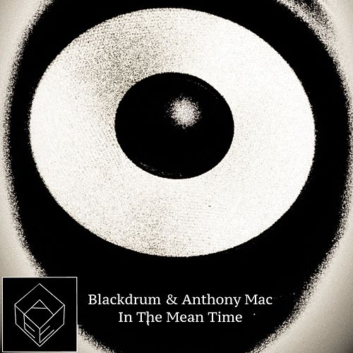 In The Mean Time by The Black Drum