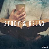 Study & Relax, Vol. 1 (Finest Relaxed After Work Music) by Various Artists
