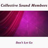 Don't Let Go by Collective Sound Members