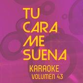 Tu Cara Me Suena Karoke (Vol. 43) by Ten Productions