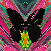 Hung Up (Remixes) (feat. Emma Gatsby) von Tritonal
