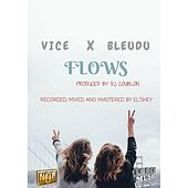 Flowz (feat. Bleudu) by Vice