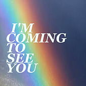 I'm Coming To See You de Various Artists