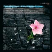 Vivaldi: Denoyé & Corrette by Various Artists