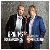Brahms: Cello sonatas by Andrei Korobeinikov and Alexander Kniazev